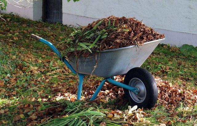 Winterklaar Maken Tuin : Winterklaar maken en onderhoud van tuinen le gardinier lisserbroek
